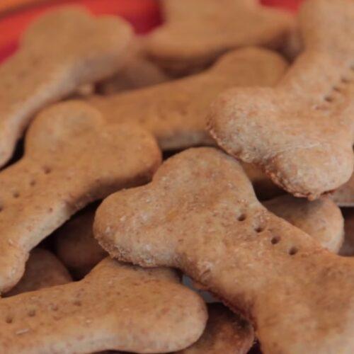 Galletas para perros caseras